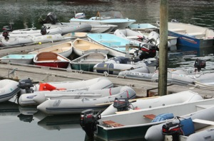 Northeast Harbor Dinghy Dock is a Busy Place!
