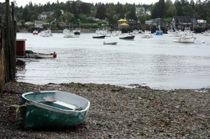 The View Next Door to the Seafood Ketch in Bass Harbor at Low Tide!