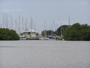 Bocas Marina, Between the Mangroves