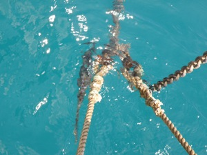 Nylon Anchor Snubber at Work