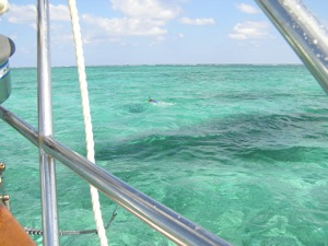 Tricky Reef Entrance in San Pedro Belize Requires a Reliable Diesel