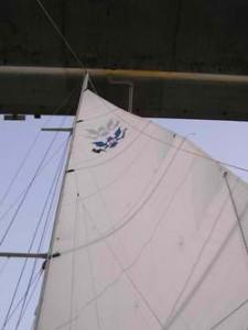 Sailing Under 7 Mile Bridge