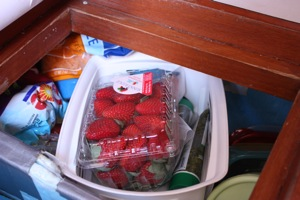 Strawberries in the Store Crushproof Container Take Up Almost the Entire Basket