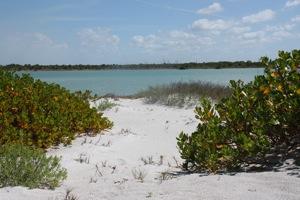 Path to the beach lagoon
