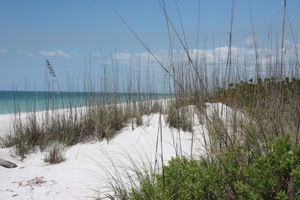 Beach Dunes Provided a Perfect Place for a Picnic Lunch -- Note:  There is no shade, so if you come, bring lots of water!