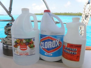 Key Cleaning Supplies ... Vinegar, Bleach and Ammonia