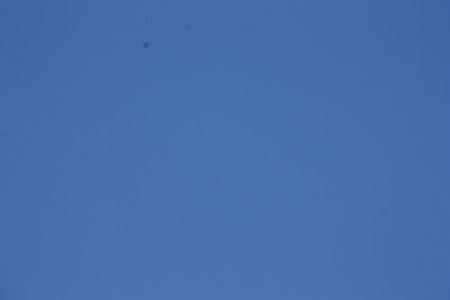 Spots show up more clearly against a plain blue background, so I focused on a cloud, then moved the camera so all I saw was blue sky ... and spots...   :(