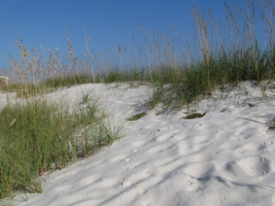 Love love love the sand dunes and soft sand beaches