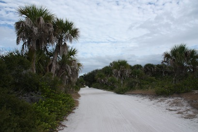 A mile long sandy path leads to the beach on the Gulf side.
