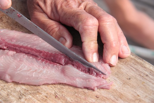 The bloodline is very obvious - you'll see it the minute you start cutting the skin off the fillet.  Now just cut it out - this usually makes 2 smaller fillets out of one larger one, but that's fine.  Just be sure to remove all the red meat.