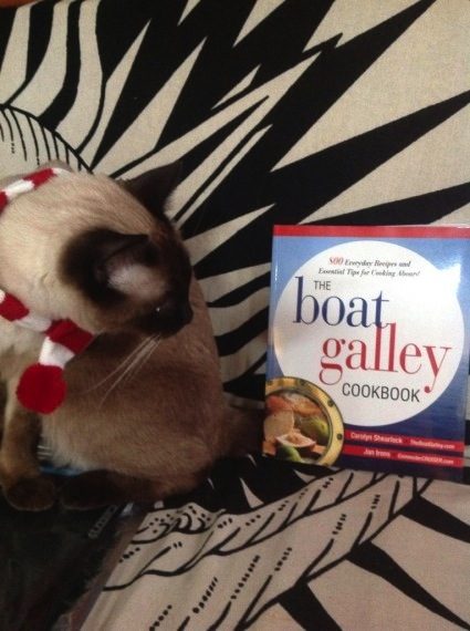 Bailey Boat Cat enjoys cooking with The Boat Galley Cookbook in Rome, Italy