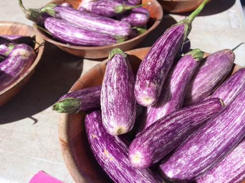 Japanese Eggplant at the Farmer's Market