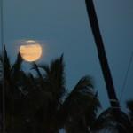 Full Moon Rising over marina