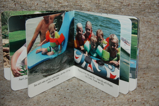 An inside spread of one of the new boardbooks.