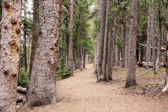 The trail around Echo Lake, close to Mount Evans.