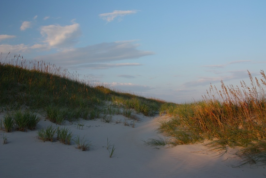 Ocracoke Beach dunes behind the