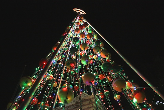 The Crab Pot Christmas Tree all lit up for the evening's festivities.