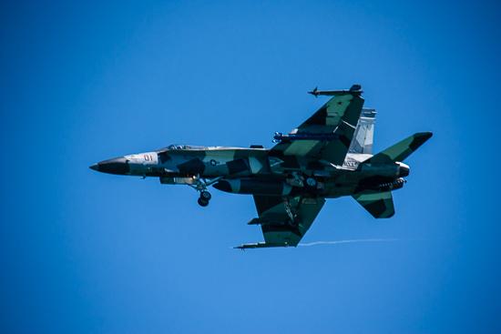 Camo F-18 SuperHornet (I think)