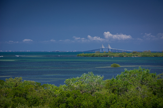 The iconic Sunshine Skyway Bridge from Emerson Preserve.