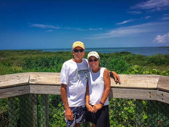 At the top of the Emerson Pointe Preserve Observation Deck